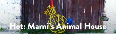 hot-marni-animal